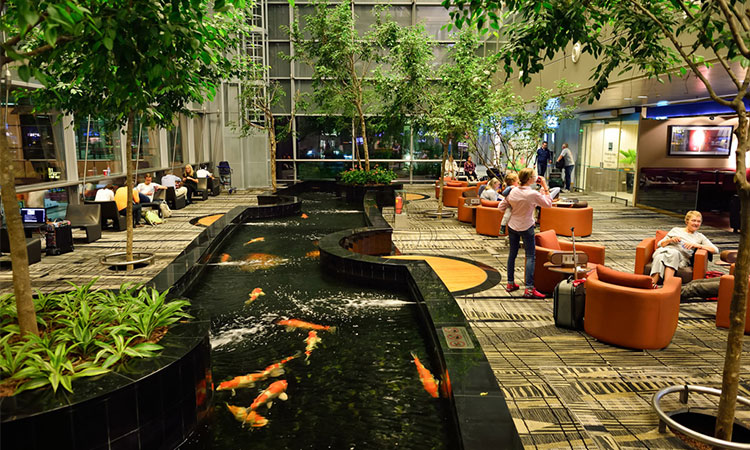 Hình ảnh 1 không gian học tập năng động, sáng tạo tại Singapore