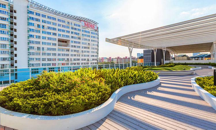 Du học ngành Y tại Viện phát triển quản lý Singapore (MDIS)