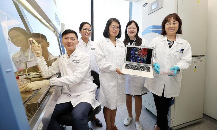 Sinh viên du học Singapore ngành công nghệ sinh học tại Nanyang có nhiều cơ hội thực hành