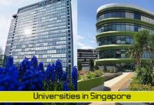 Vì sao nên theo học các trường công lập tại Singapore
